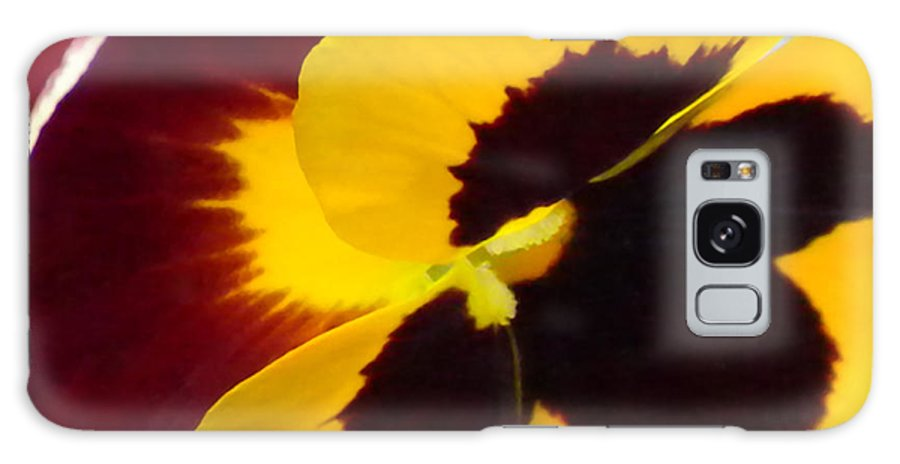 Pansy Galaxy S8 Case featuring the photograph Yellow And Burgundy Pansy by Brenda Parent