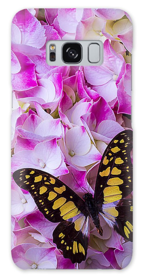 Yellow Black Galaxy S8 Case featuring the photograph Yellow Black Butterfly On Hydrangea by Garry Gay