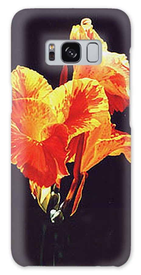 Floral Galaxy Case featuring the painting Yellow Canna by Gary Hernandez