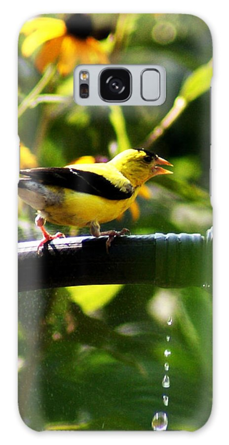 Yellow Finch Galaxy S8 Case featuring the photograph Yellow Finch With A Water Leak by B Wayne Mullins