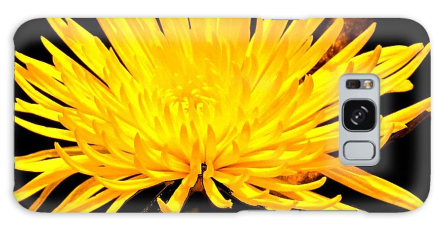 Yellow Galaxy S8 Case featuring the photograph Yellow Flash by Ian MacDonald