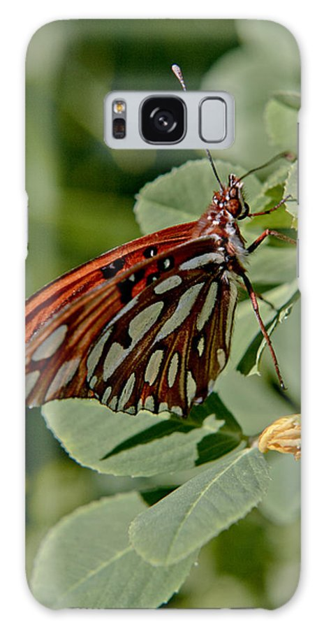 Butterfly Galaxy S8 Case featuring the photograph Yellow Flower With Gulf Fritillary Butterfly by Her Arts Desire