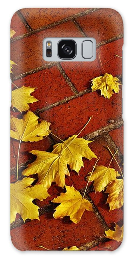 Sidewalk Galaxy S8 Case featuring the photograph Yellow Leaves On Red Brick by Jean Goodwin Brooks
