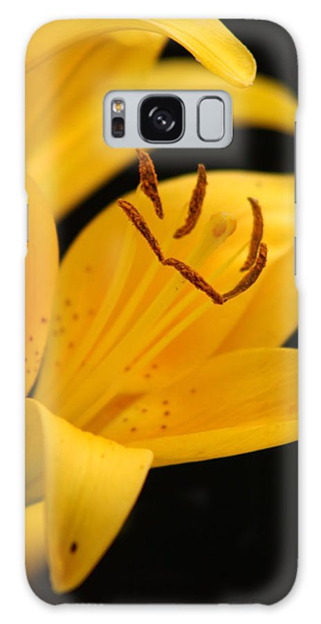 Lily Galaxy S8 Case featuring the photograph Yellow by Tami Rounsaville