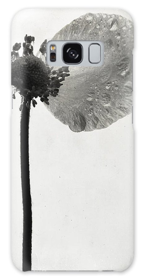 Flowers Galaxy S8 Case featuring the photograph Yesterdays Gone by The Artist Project