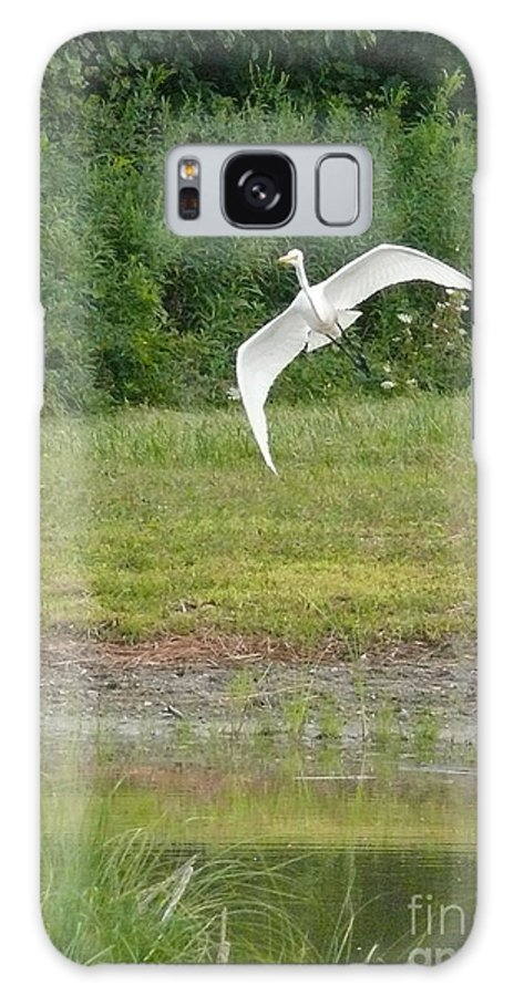 Heron Galaxy S8 Case featuring the photograph Young Heron In Flight by Betsy Cotton