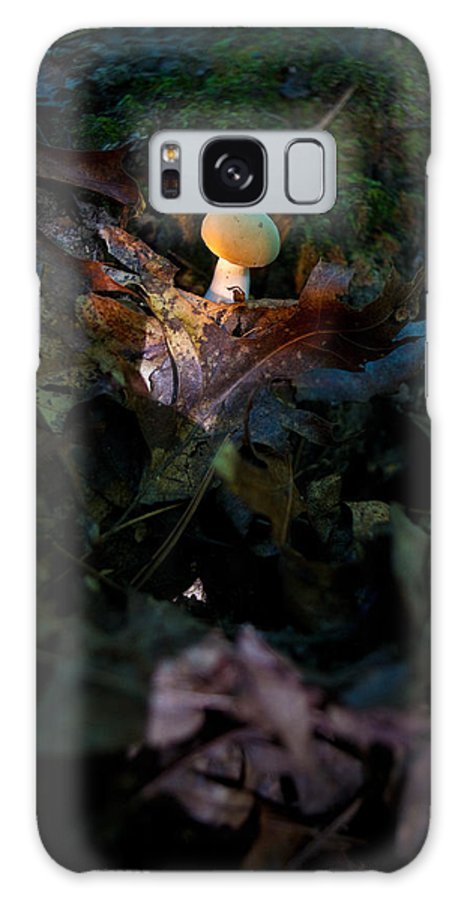 Cove Galaxy S8 Case featuring the photograph Young Lonely Mushroom by Douglas Barnett