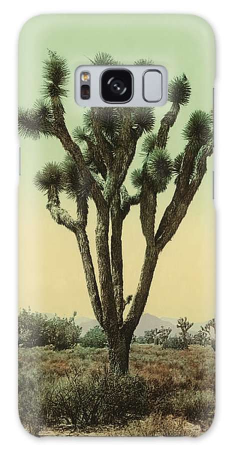 Yucca Galaxy S8 Case featuring the photograph Yucca Cactus At Hesperia California by Bill Cannon