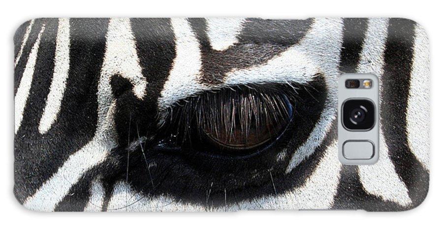 Zebra Galaxy S8 Case featuring the photograph Zebra Eye by Linda Sannuti