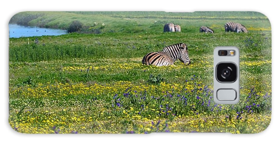 Landscape; Flowers; Zebras; Meadow; Wild; Animal; Nature; Farmland; South Africa; Swartland; Green; Yellow; Background; Galaxy S8 Case featuring the photograph Zebra Heaven.. by Werner Lehmann
