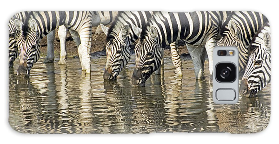 Burchell Zebra Galaxy S8 Case featuring the photograph Zebras At Water Hole by Dennis Cox