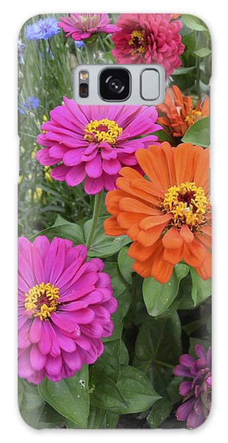 Flower Galaxy S8 Case featuring the photograph Zinnia Garden by William Hallett