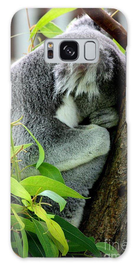 Zoo Galaxy S8 Case featuring the photograph Zoo Life 2011.no.3 by RL Clough