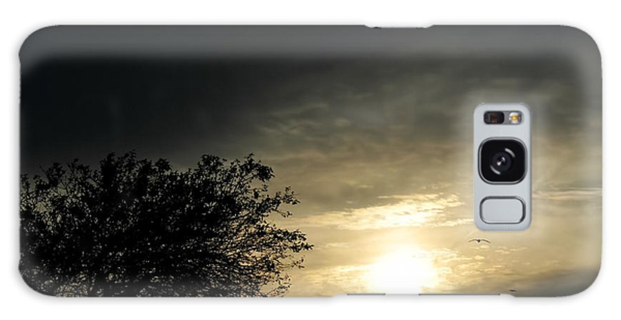 Galaxy S8 Case featuring the photograph 003 When Feeling Down Pick Your Head Up To The Skies Series by Michael Frank Jr