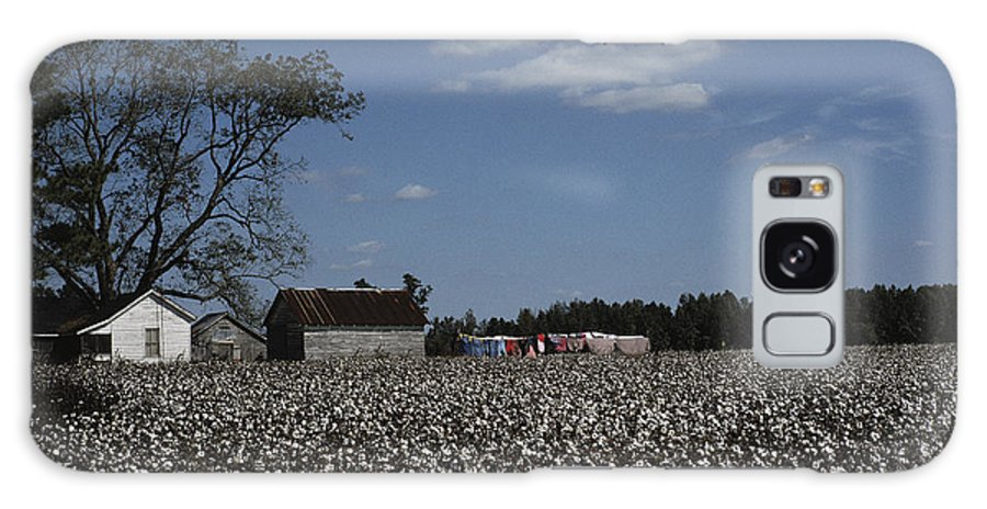 Farmers And Farming Galaxy S8 Case featuring the photograph A Cotton Field Surrounds A Small Farm by Medford Taylor