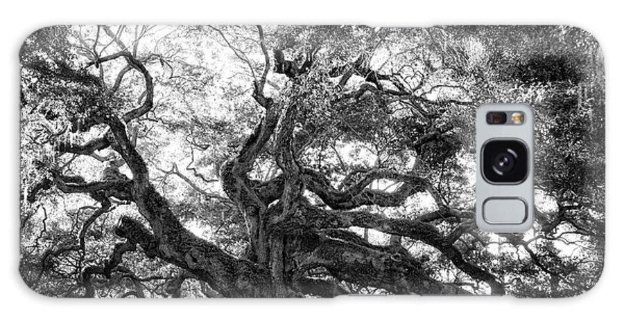 Angel Oak Galaxy S8 Case featuring the photograph Angel Oak by Lynne Jenkins