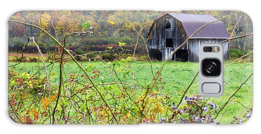 West Virginia Galaxy S8 Case featuring the photograph Autumn Along Tioga Road by Thomas R Fletcher
