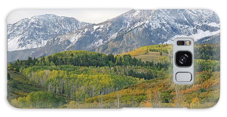 Aspens Galaxy S8 Case featuring the photograph Autumn Dallas Divide by Dean Pennala
