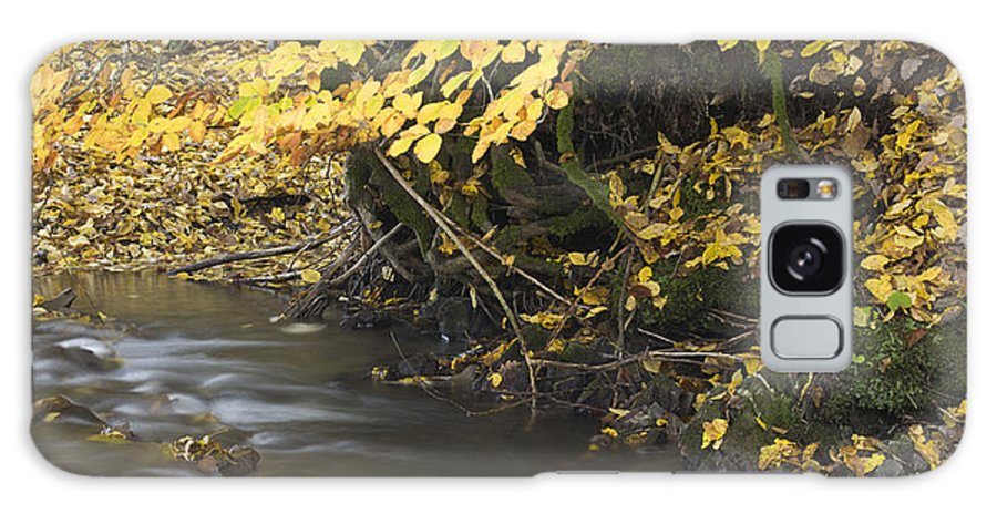 Autumn Galaxy S8 Case featuring the photograph Autumn Flow by Ian Middleton