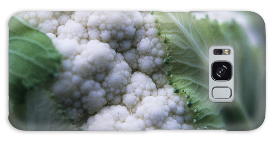 Brassica Oleracea Botrytis Galaxy S8 Case featuring the photograph Cauliflower by Veronique Leplat