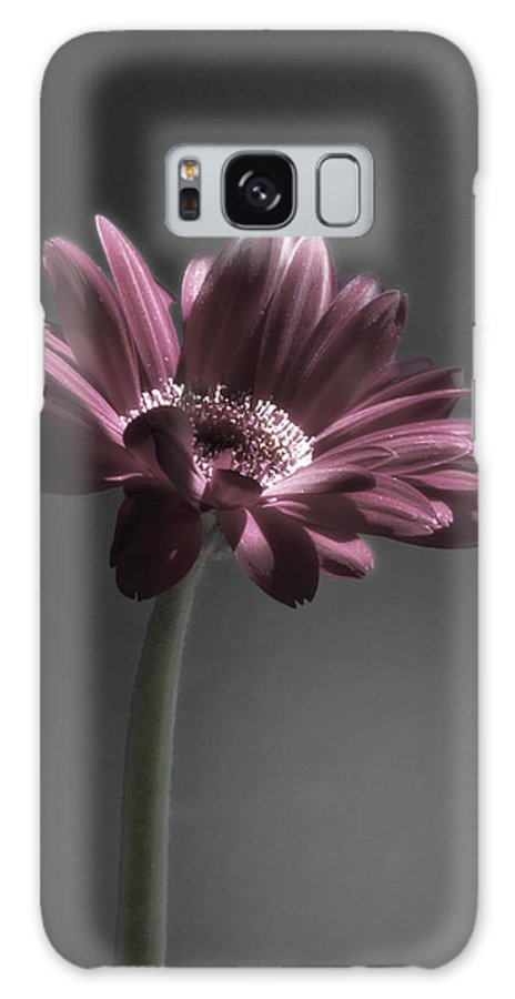Digitally Hand Colored Galaxy S8 Case featuring the photograph Daisy Mae by Linda Dunn