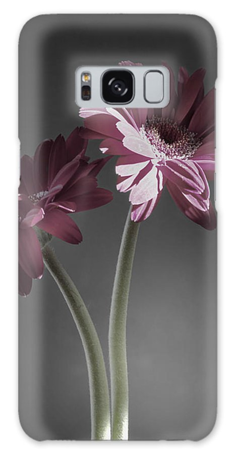 Digitally Hand Colored Galaxy S8 Case featuring the photograph Daisy Mae Too by Linda Dunn