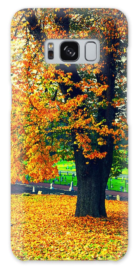 Autumn Galaxy S8 Case featuring the photograph Fall by Priscilla De Mesa