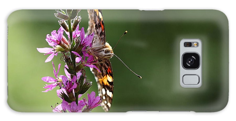 Butterfly Galaxy S8 Case featuring the photograph Flower Dance by Paul Slebodnick