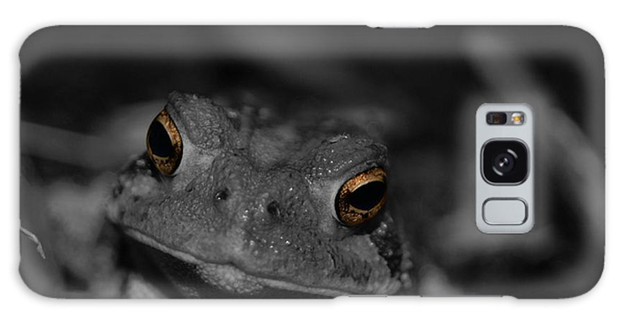 Frog Galaxy S8 Case featuring the photograph Frog by Jesse Croley