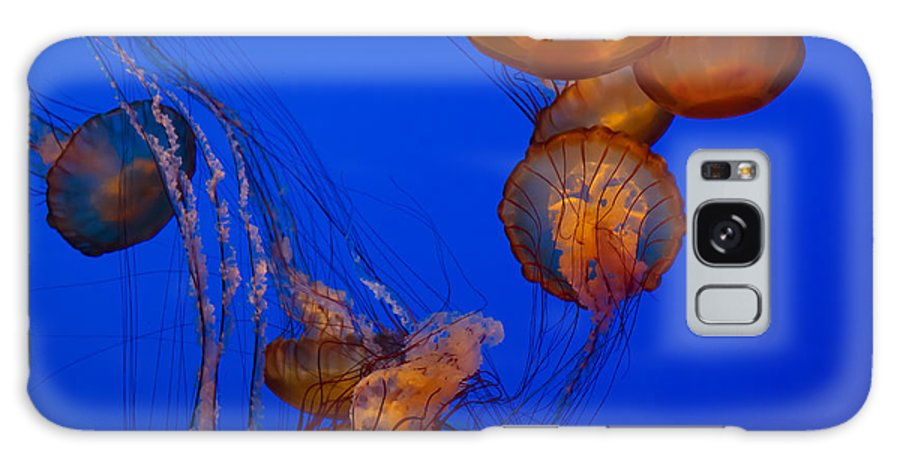 Jellyfish Galaxy S8 Case featuring the photograph Jellyfish Dance by Roger Mullenhour
