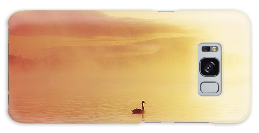 Animals Galaxy S8 Case featuring the photograph Lough Leane, Killarney, Co Kerry by The Irish Image Collection