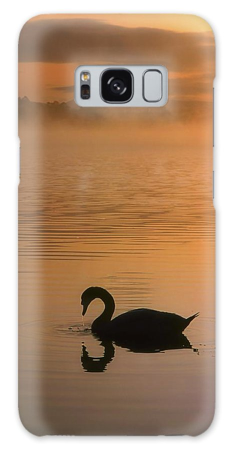 Back Lit Galaxy S8 Case featuring the photograph Lough Leane, Lakes Of Killarney, Co by The Irish Image Collection