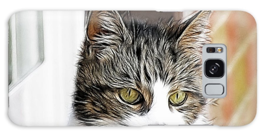 Cat Galaxy S8 Case featuring the photograph Memories Of 2011 by Maciek Froncisz