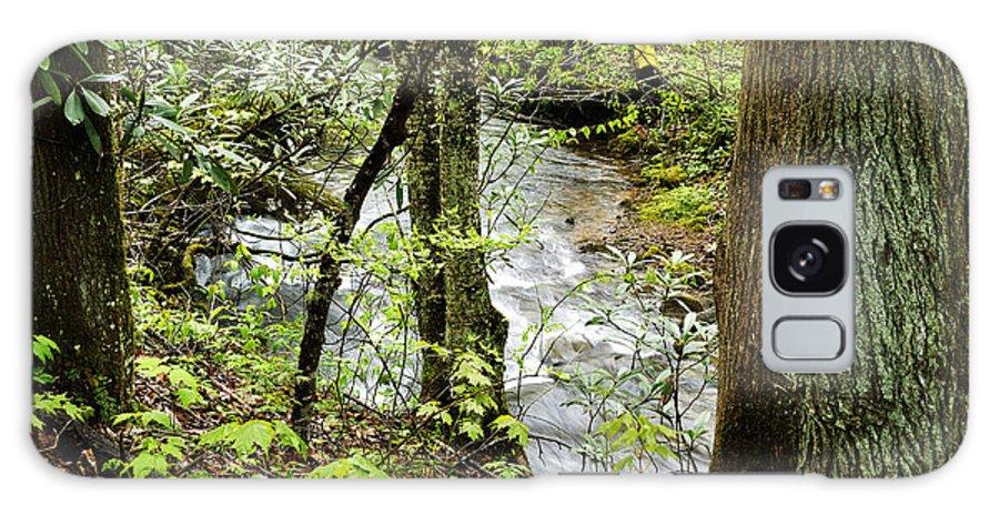 Craig Run Galaxy S8 Case featuring the photograph Stream Monongahela National Forest by Thomas R Fletcher