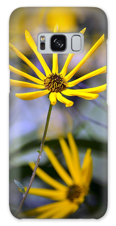 Flowers Galaxy S8 Case featuring the photograph Wild Swamp Daisy by Carolyn Marshall