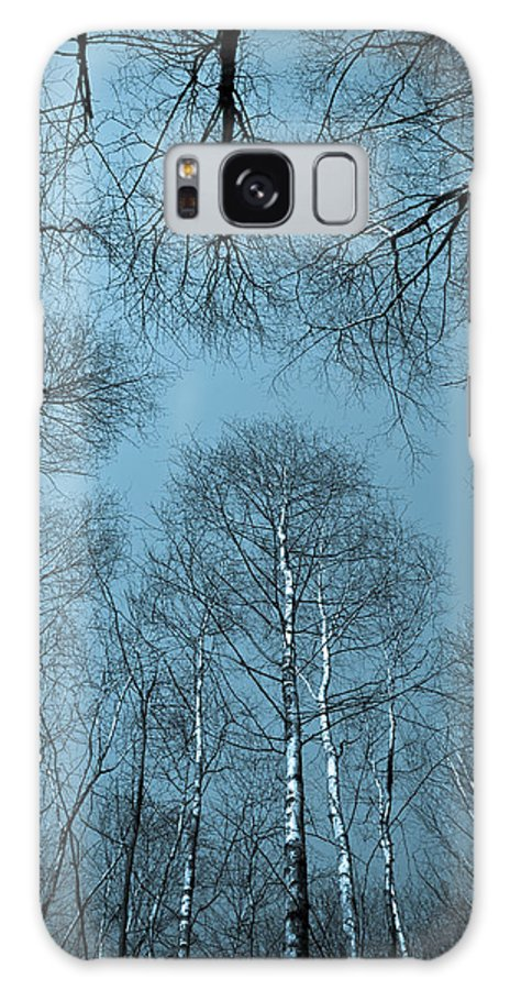 Tree Galaxy S8 Case featuring the photograph Trees In Epping Forest by David Pyatt