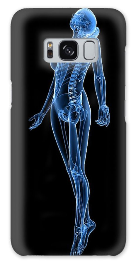 Artwork Galaxy S8 Case featuring the photograph Female Anatomy, Artwork by Sciepro