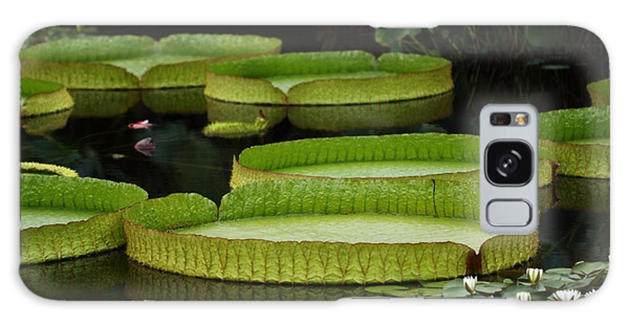 Flower Galaxy S8 Case featuring the photograph Water Garden by Paul Slebodnick