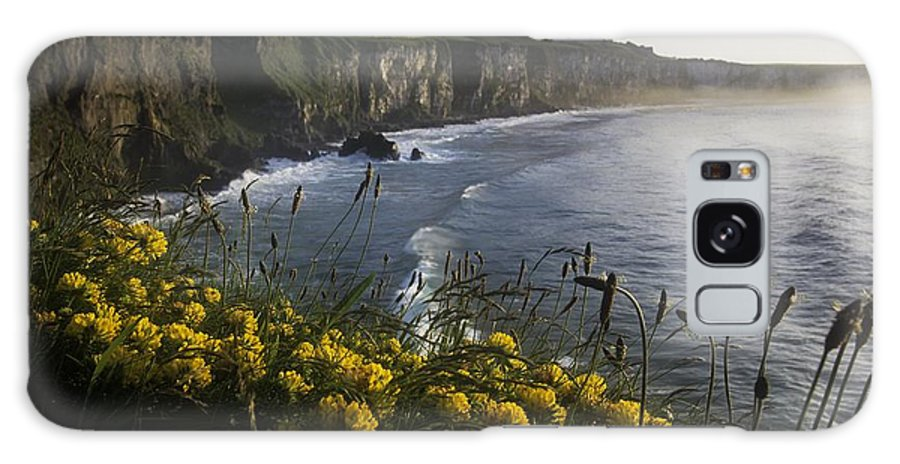 Coast Galaxy S8 Case featuring the photograph Wildflowers At The Coast, County by The Irish Image Collection