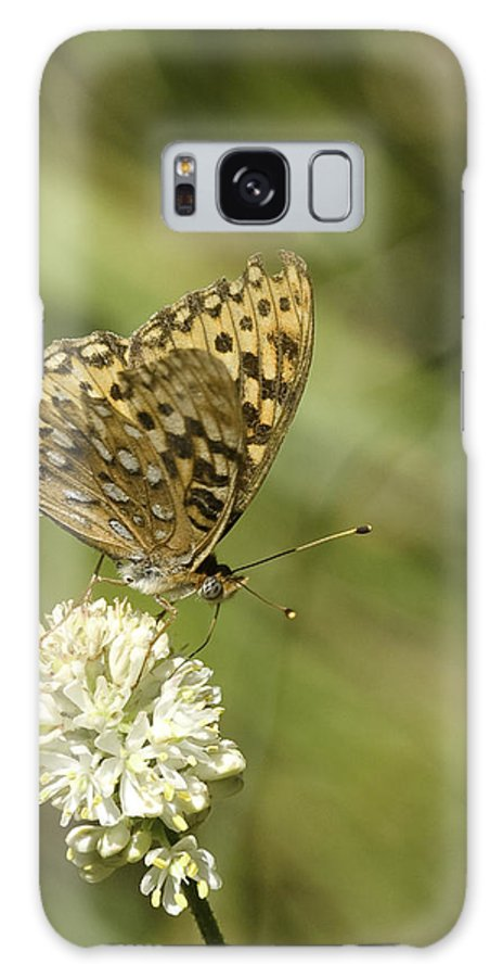 Orange Galaxy S8 Case featuring the photograph Butterfly by Betty Depee