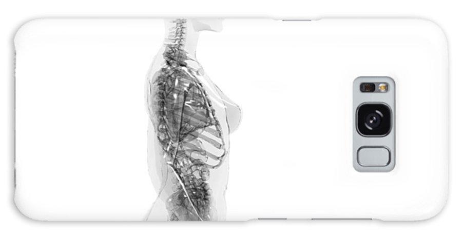 Upper Galaxy S8 Case featuring the photograph Upper Body Anatomy by Christian Darkin