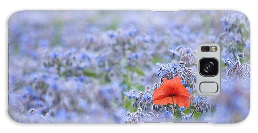 Borage Galaxy S8 Case featuring the photograph Field Poppy (papaver Rhoeas) by Adrian Bicker