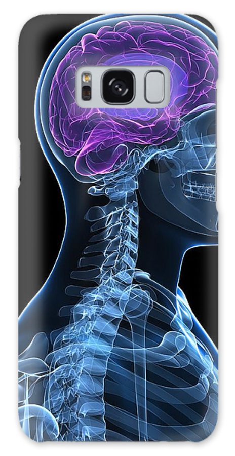 Artwork Galaxy S8 Case featuring the photograph Head Anatomy, Artwork by Sciepro