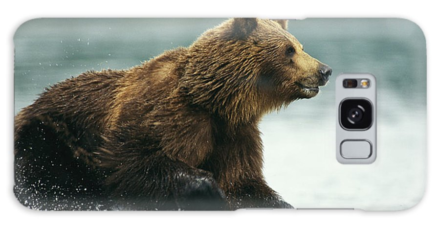 Commonwealth Of Independent States Galaxy S8 Case featuring the photograph A Brown Bear Rushing Through Water by Klaus Nigge