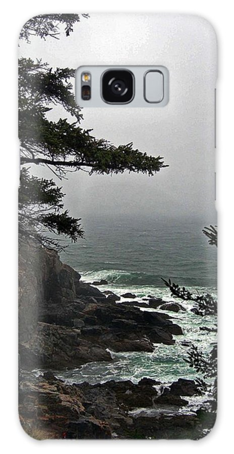 Me Galaxy S8 Case featuring the photograph A Tricky Acadian Cove by Skip Willits