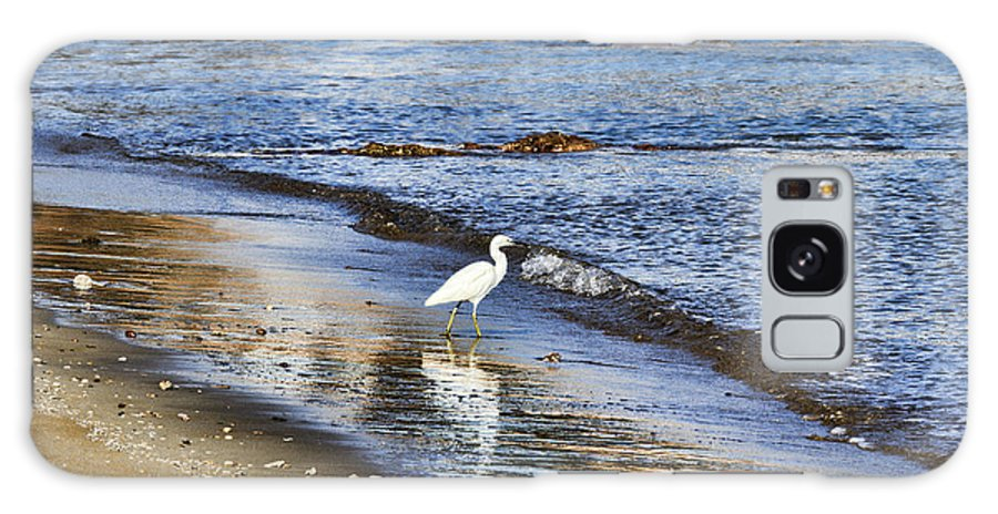 Egret Galaxy S8 Case featuring the photograph A Visit To The Beach by Douglas Barnard