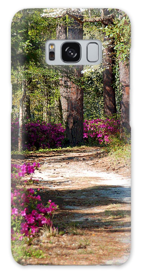 Fine Art Galaxy S8 Case featuring the photograph A Walk In The Springtime Woods by Suzanne Gaff
