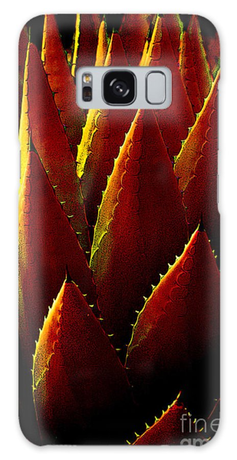 Agave Galaxy S8 Case featuring the photograph Agave Red Yellow by Victoria Page