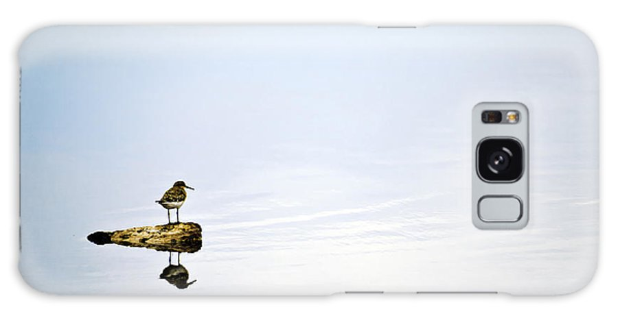 Bird; Blue; Clouds; Country; Digital Art; Mel; Muleshoe; Muleshoe Nwf; National Wildlife Reserve; Nature; Photographs; Photography; Photos; Playa; Prints; Sandpiper; Scenes; Scenic; Sky; Texas; Weather Galaxy S8 Case featuring the photograph Alone - Just The Two Of Us by Melany Sarafis