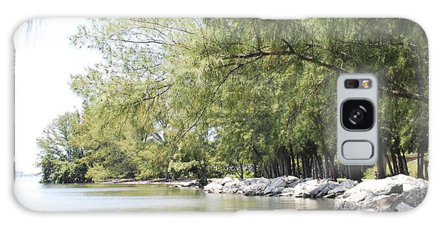 Canvas Galaxy S8 Case featuring the photograph Along The Bend by G Adam Orosco